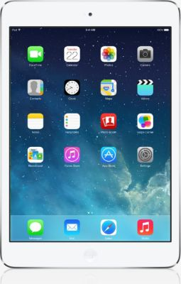 Apple IPad mini WiFi 16 Go