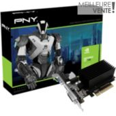 Carte graphique PNY GeForce GT 730