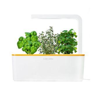 Click And Grow Smart Herb Garden orange