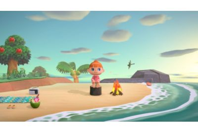 Jeux SWITCH NINTENDO Animal Crossing : New Horizons