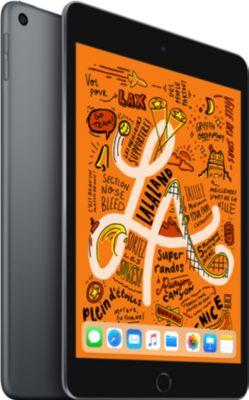 Tablette Apple Ipad Mini 7.9'' 256Go Gris Sidéral