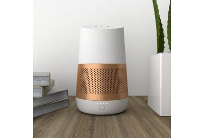 Batterie NINETY7 LOFT cuivre pour Google Home