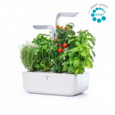 Veritable smart arctic white jardin d 39 int rieur boulanger for Jardin veritable
