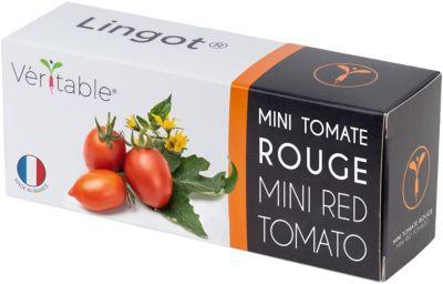 Jardin d 39 int rieur veritable tomates cerises boulanger for Jardin veritable