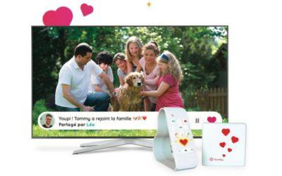 Trans. Image SUNDAY Box Families