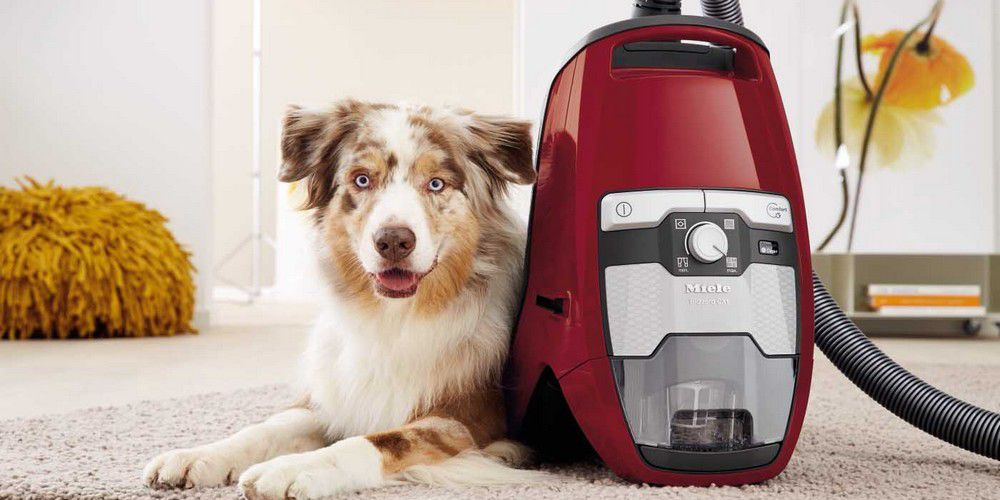 Aspi MIELE Blizzard CX1 Cat & Dog