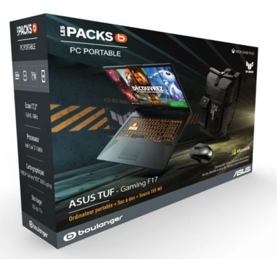 PC Gamer Asus Pack F17 TUF766HM HX101T