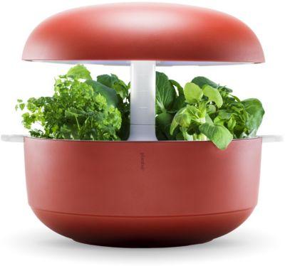 Jardin d'intérieur Plantui 6 Smart Garden rouge