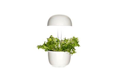 Jardin int PLANTUI 3E Smart Garden blanc