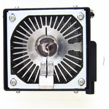 Hughes Jvc G1000 - lampe complete originale