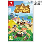 Jeu Switch Nintendo Animal Crossing : New Horizons