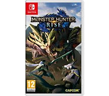 Jeu Switch Nintendo  Monster Hunter Rise