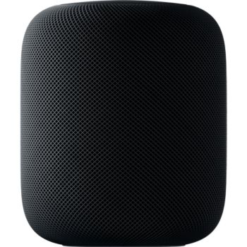Apple HomePod Gris Sideral