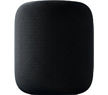 Enceinte Wifi Apple  HomePod Gris Sideral
