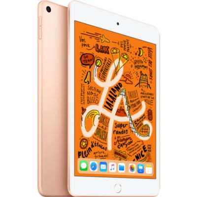 Location Tablette Apple Ipad Mini 7.9'' 64Go Or