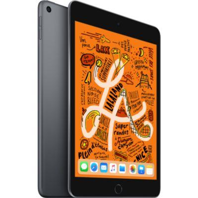 Location Tablette Apple Ipad Mini 7.9'' 256Go Gris Sidéral