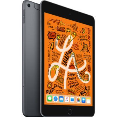 Location Tablette Apple Ipad Mini 7.9'' 64Go Cell Gris Sidéral