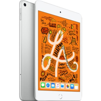 Location Tablette Apple Ipad Mini 7.9'' 256Go Cell Argent