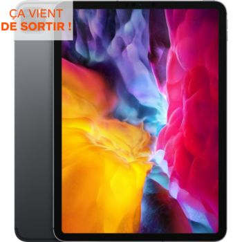 Ipad Pro 11 Cell 1To Gris Sidéral