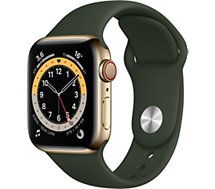 Montre connectée Apple Watch  40MM Acier Or/Vert Series 6 Cellular