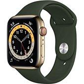 Montre connectée Apple Watch 44MM Acier Or/Vert Series 6 Cellular