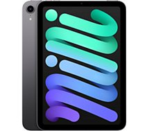 Tablette Apple Ipad  Mini 8.3 256Go Gris sidéral