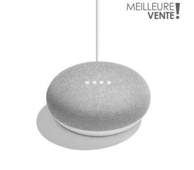 Assistant vocal Google Home Mini Galet