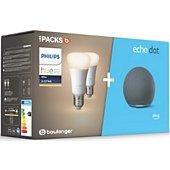 Assistant vocal Amazon Echo Dot4 + Hue E27 White X2