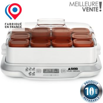 SEB YG661A00 MULTIDELICES EXPRESS marron