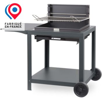 Gris NEUF extérieur Gourmet chariot BBQ Barbecue grill
