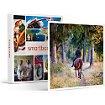 Coffret cadeau Smartbox Leçon d'équitation ou agréable balade à