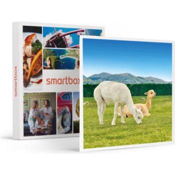 Smartbox Découverte des animaux