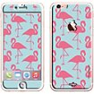 Sticker iPhone 6/6S Flamand rose