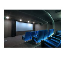 Ecran de projection Oray  Velours Home cinema IMAGE 135x240