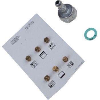 Beko Sachet injecteurs butane propane 4431910