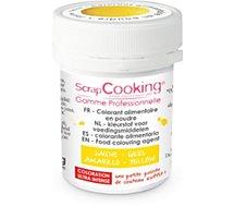 Colorant alimentaire Scrapcooking  artificiel en poudre jaune 5g