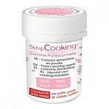 Colorant alimentaire Scrapcooking  artificiel en poudre rose poudre 5g