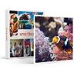 Coffret cadeau Smartbox Visite de l'Aquarium Sea Life de Val d'E
