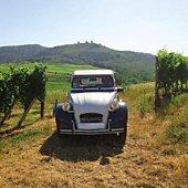 Coffret cadeau Smartbox Visite en 2 CV et dégustation de vins au