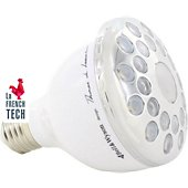 Ampoule connectée Bell & Wyson WIFI LED 256 Couleurs