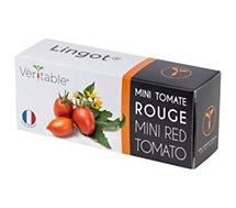 Recharge jardin d'intérieur Veritable  mini tomate rouge
