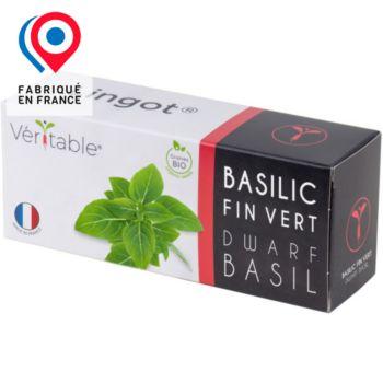 Veritable Basilic fin vert nain BIO
