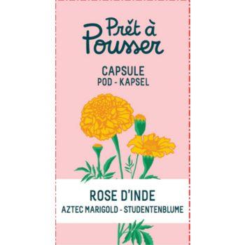 Pret A Pousser rose d inde