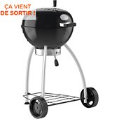 Barbecue charbon Rosle boule Belly F50