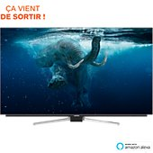 TV OLED Grundig 55VLO9895BP OLED