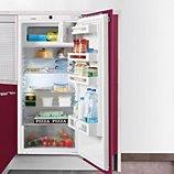 Réfrigérateur 1 porte encastrable Liebherr  IK2324