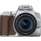 Appareil photo Reflex Canon  EOS 250D Argent + 18-55mm IS STM