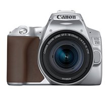 Appareil photo Reflex Canon  EOS 250D Argent 18-55 IS STM