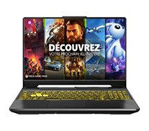 PC Gamer Asus  A15-TUF566IV-HN253T