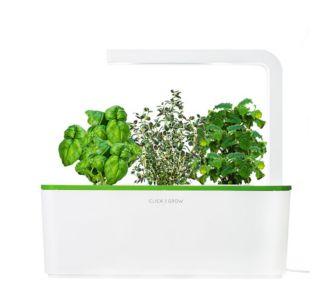 Click And Grow Smart Herb Garden vert